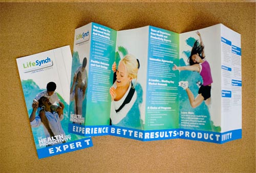 LifeSynch Capabilities Brochure Print Inspiration
