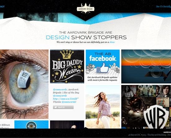 aardvarkbrigade.com site design