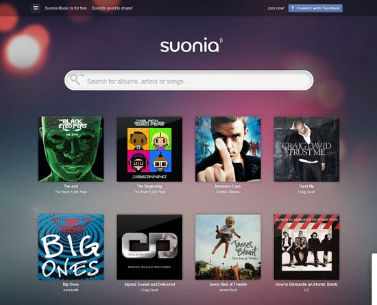 suonia.com site design