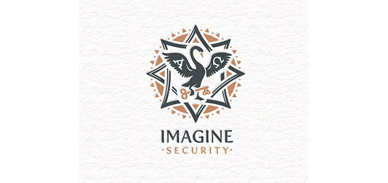 Imagine Security Logo Design