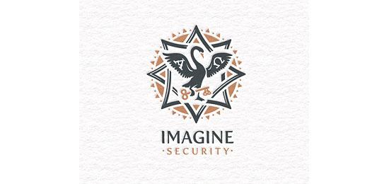 Imagine Security Logo Design