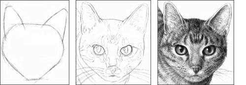 Bill the Cat tutorial