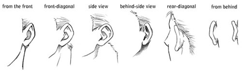 How to draw ears tutorial  Ear Drawing Step By Step