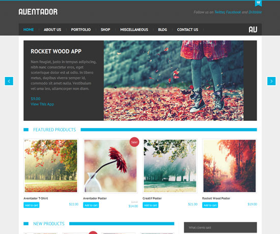 Aventador eCommerce WordPress Theme