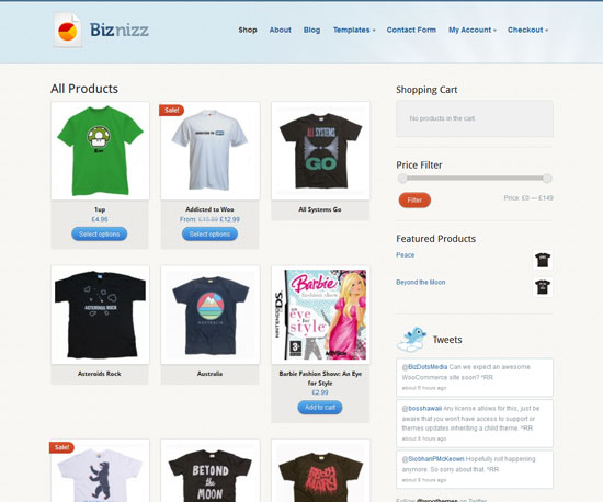 Biznizz eCommerce WordPress Theme