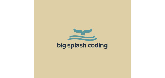 Big Splash Coding Logo With Clever Message