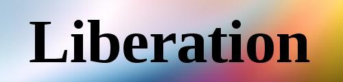 Liberation serif bold font