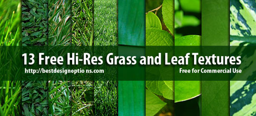 13 Grass and Leaf Textures - Free grass textures ready to download