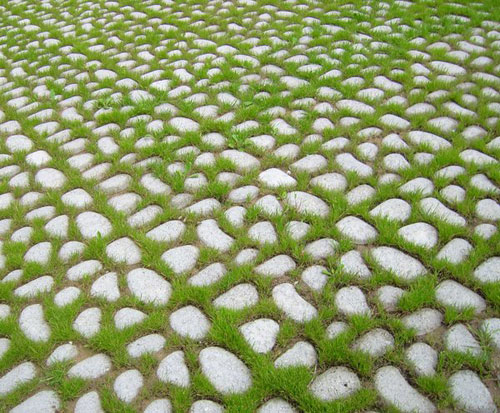 Stones with grass by ~Pollon82 - Free grass textures ready to download