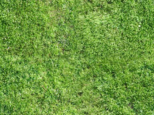 grass texture repeating patter by ~mas - Free grass textures ready to download