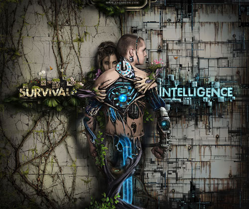 Survival vs. Intelligence Photo Manipulation