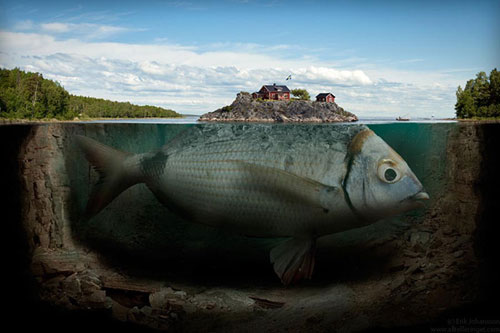 Fishy island Photo Manipulation