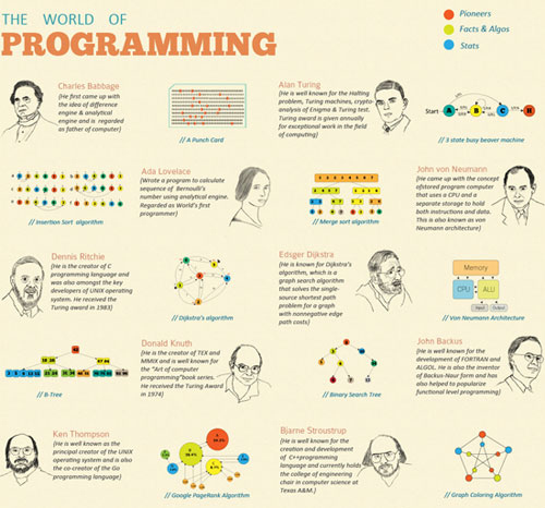 The World Of Programming well designed infographic