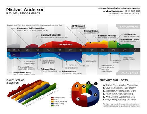 Michael Anderson Resume well designed infographic