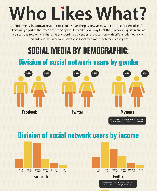 Who Likes What: Social Media By Demographic well designed infographic