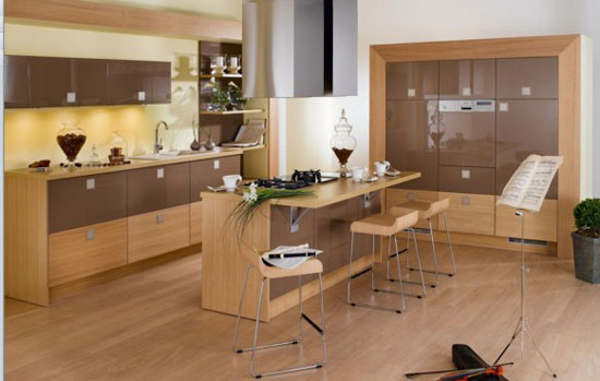 Kitchen Interior Design Idea 14