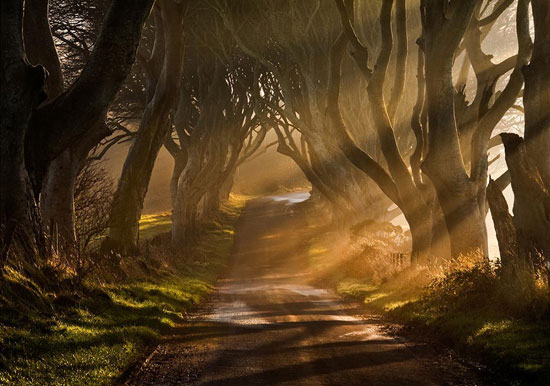 The Road Goes Ever On & On Beautiful Landscape Photography