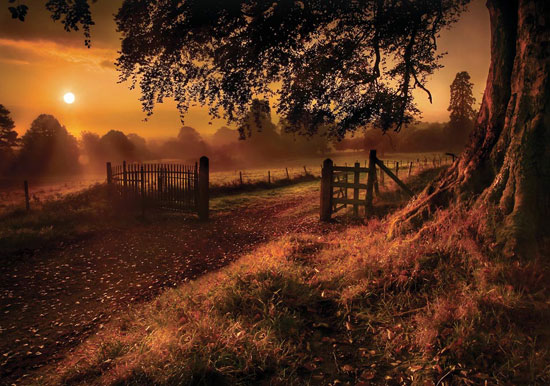 Autumn Sunrise Beautiful Landscape Photography
