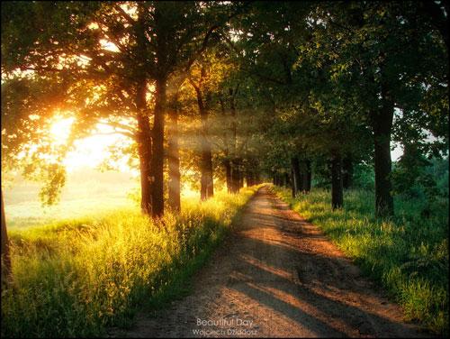 beautiful landscape photography. beautiful_day_by_dr4kon landscape photography what it is u0026 tips 200 pictures beautiful i