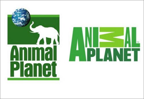 Animal Planet Logo Change