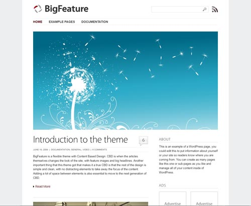 BigFeature