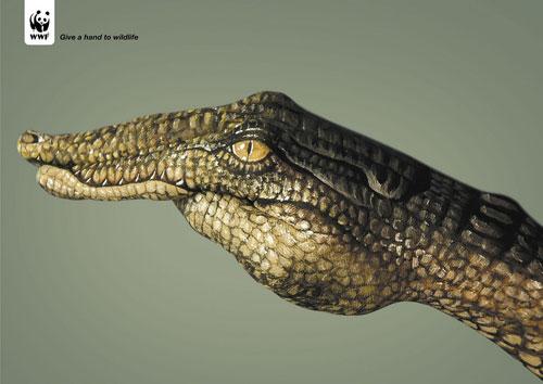 WWF print advertising 2