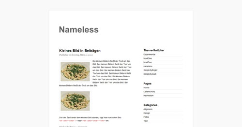 Nameless - Top Quality Free Minimalist WordPress Theme