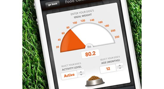Fidotown Food Calculator Mobile User Interface Design Inspiration