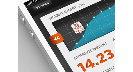 Fidotown Weight Chart Mobile User Interface Design Inspiration