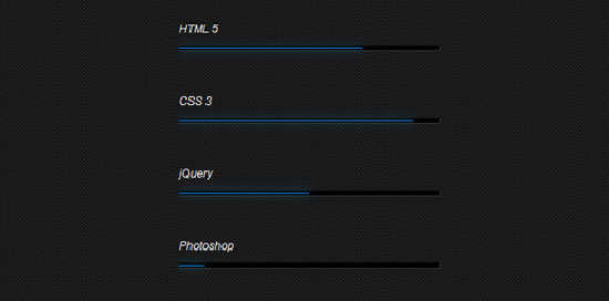CSS3 Skill Bar Animation