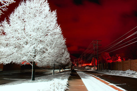 Winter Night Photography