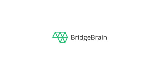 BridgeBrain Logo Design