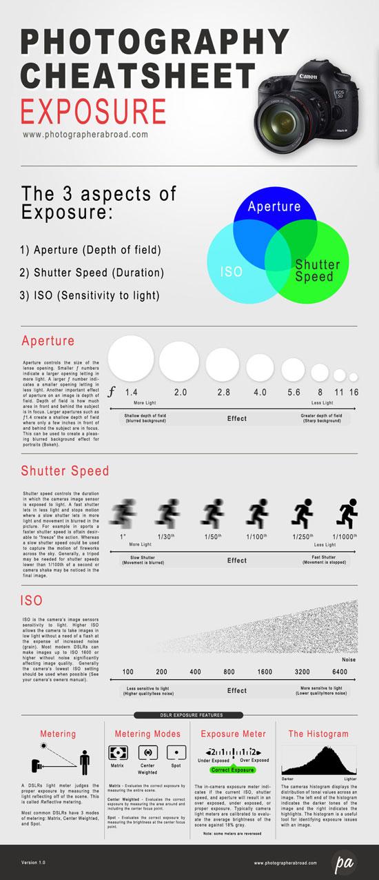 Microsoft PowerPoint 2010 Plain Simple