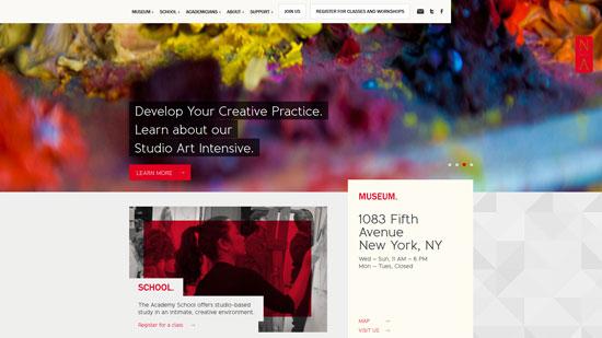 nationalacademy.org site design