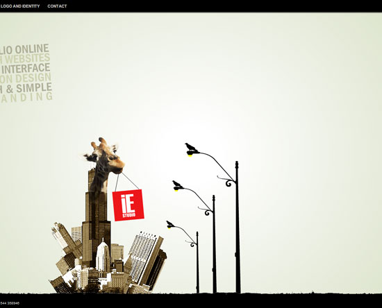 iestudio.co.il Flash Site Design Inspiration