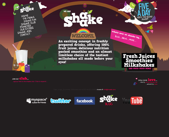 shaake.com Flash Site Design Inspiration