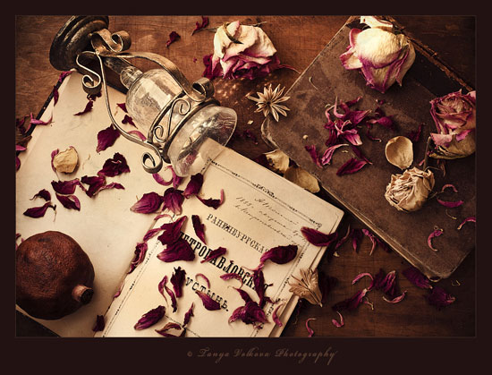 1 - Art of Still life photography