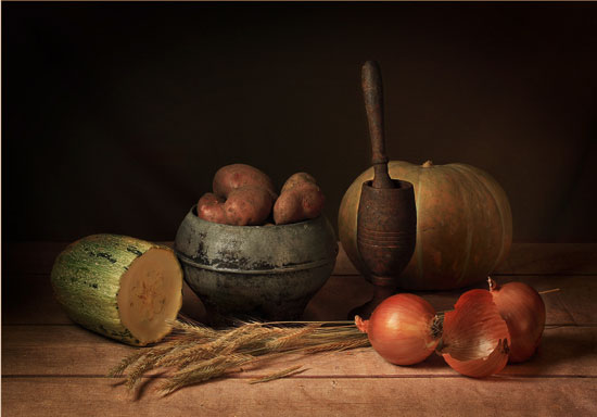 Modest gift of autumn Still Life Photography