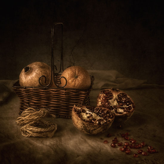 Silent things Still Life Photography