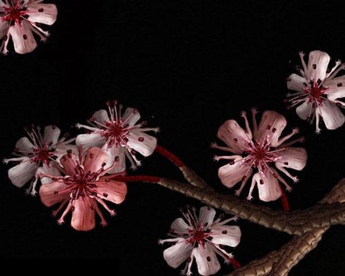 Human flowers by Cecelia Webber 11