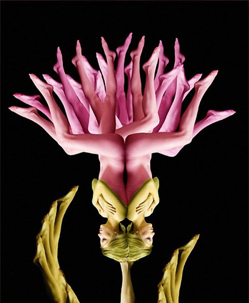Human flowers by Cecelia Webber 14