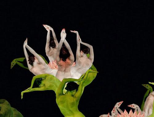 Human flowers by Cecelia Webber 7