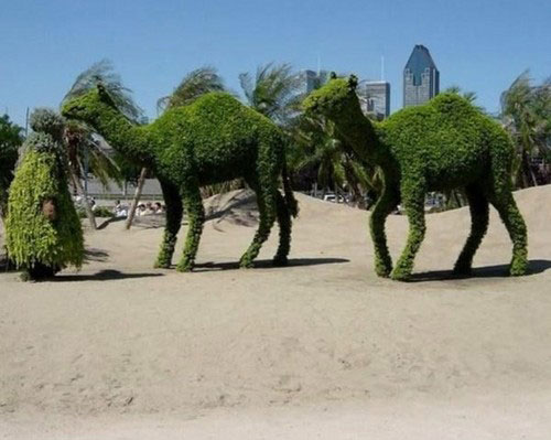 Green sculptures 13