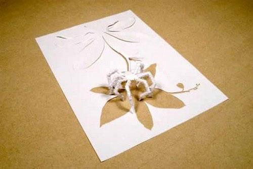Fine art paper 6