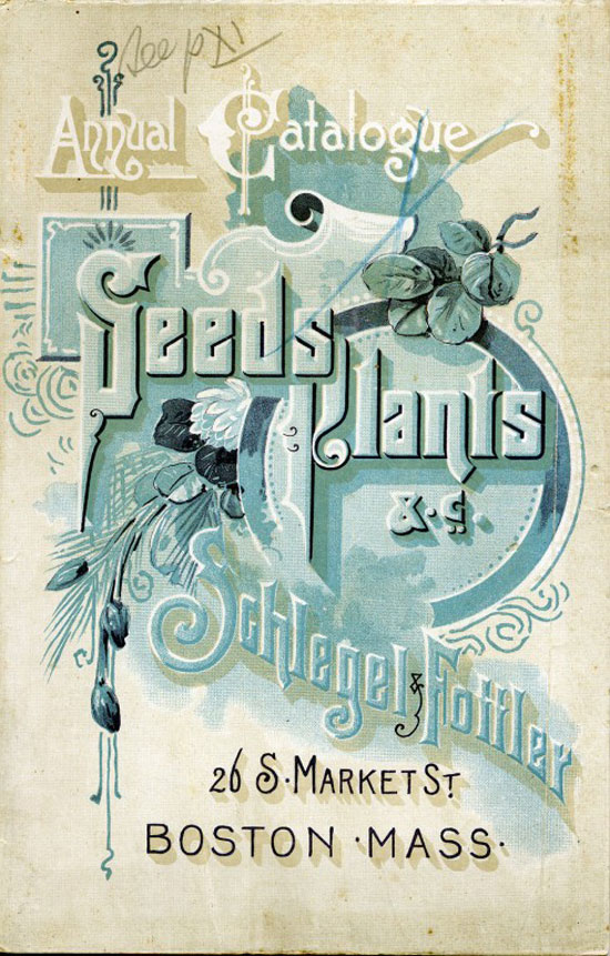 Seeds Plants Vintage Typography Design