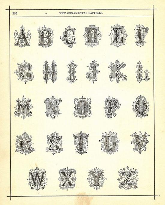 Ornamental Capital Letters Vintage Typography Design