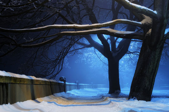 night winter Photography Wallpaper