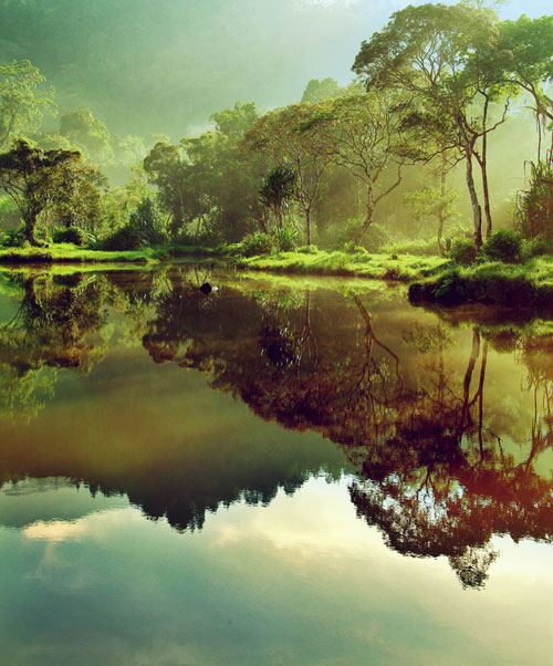 Morning at Situ Gunung II - Relaxing Waterscapes Photography