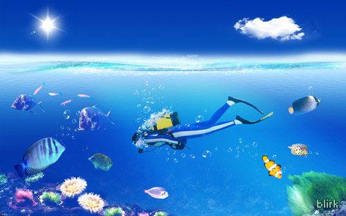 Diver wallpaper