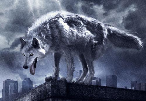 How to Create a Photo Manipulation of a Wolf in Stormy Weather Photoshop Tutorial